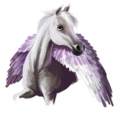 Pegasus digital art illustration isolated on white background