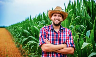 Farmer in a corn field. Agricultural concept