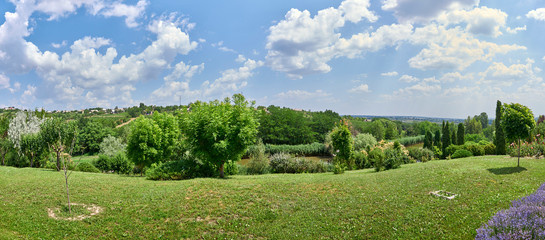 beautiful panorama. landscape of colorful and lush garden. blue sky with fluffy clouds