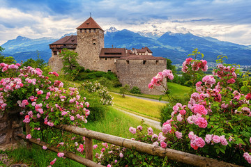 Vaduz castle, Liechtenstein, Alps mountains Wall mural