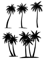 Set tropical palm trees plants, black silhouettes
