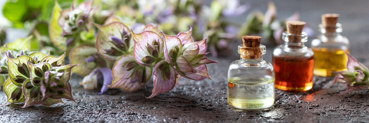 Obraz Panoramic header of essential oil bottles and clary sage - fototapety do salonu