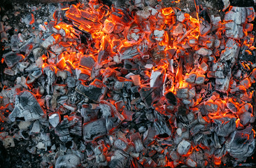 Poster Firewood texture Burning coals texture of bonfire abstract background.
