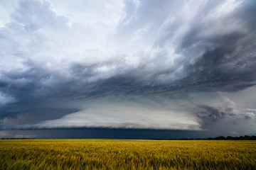 Dramatic storm clouds over a field