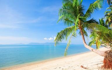 Paradise Beach At Maldives Islands Wallpaper HD