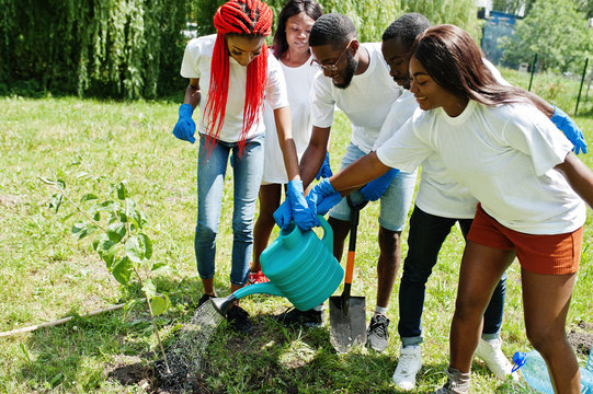 Group of happy african volunteers sprout watered from a watering can tree in park. Africa volunteering, charity, people and ecology concept.