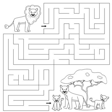 Coloring page for kids. Maze game. Cute cartoon lion find right way to his family. African animals.