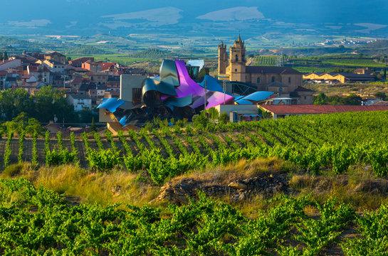 Elciego village, Wine region of la Rioja Alavesa, Alava, The Basque Country, Spain, Europe