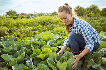 Young farmer working at her garden in sunny day. Woman engaged in the cultivation of eco friendly products. Concept of farming, agriculture, healthy lifestyle, growing natural nutrition by its own. Fotomurales