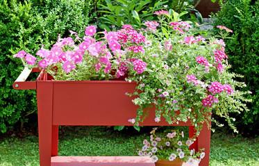 Blumenwagen mit Petunien und Verbenen