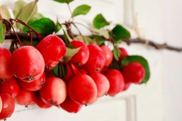 Autumn door decoration made of paradise apples (Malus pumila Mill)