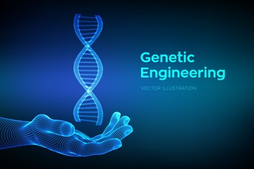 DNA sequence in hand. Wireframe DNA molecules structure mesh. DNA code editable template. Science and Technology concept. Vector illustration. Wall mural