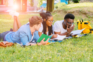 Group of multiethnic students lying on green grass at park, preparing for final exam, university education concept. Sun glare effect.