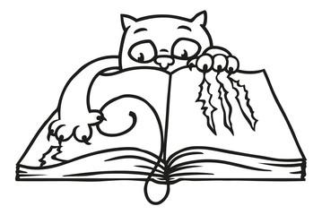 Katze zerkratzt Buch beim Lesen mit ihren Krallen