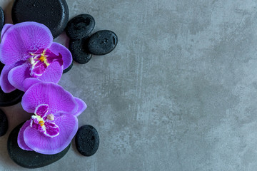 Thai Spa. Top view of hot stones setting for massage treatment and relax with purple orchid on blackboard with copy space.  Lifestyle Healthy Concept