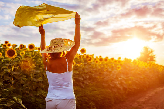 Senior woman walking in blooming sunflower field raising hands with scarf and having fun. Summer vacation