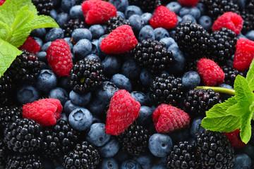 Blackberry, raspberry, blueberry and mint background. Fototapete