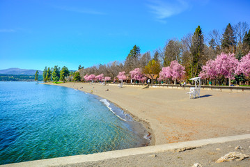 A beautiful sandy beach along the shores of Lake Coeur d'Alene at spring time at city beach and Independence Point in Coeur d'Alene, Idaho