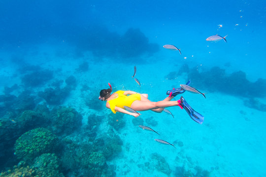 Woman snorkeling around corals in the Caribbean Ocean, in Cozumel Island, Mexico