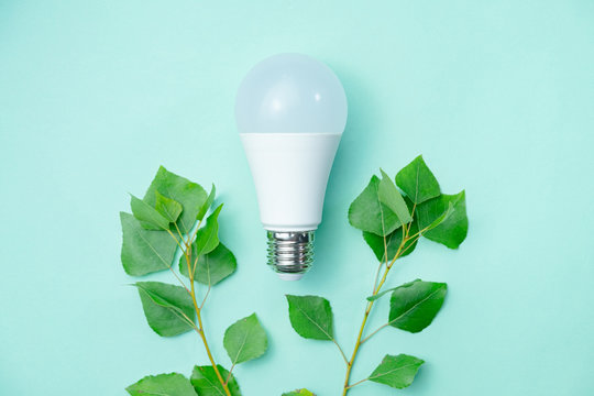 Led lightbulb and green leaves - energy saving concept. Abstract image symbolizing environmental awareness and economical usage of electricity