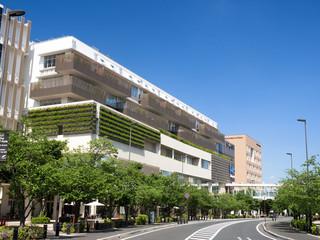 千葉県 柏の葉キャンパス駅西口付近