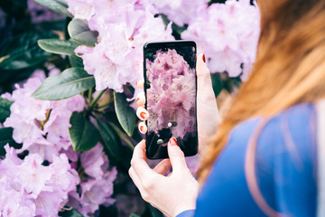 Midsection of woman taking picture of blooming flowers with smartphone