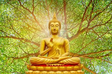 Golden Buddha image under the Bodhi leaf, natural background