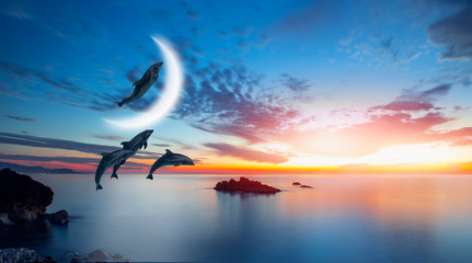 Wall Mural - Silhoutte of beautiful dolphin jumping up from the sea at sunset with crescent moon