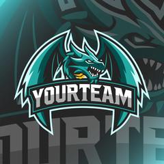 Vector illustration Dragon logo Mascot for teammate