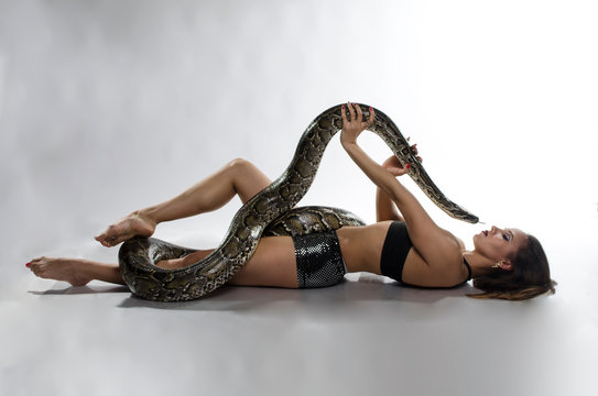 Sexy woman and tiger python in the studio