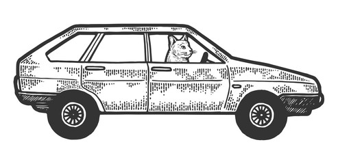 Cat driving car sketch engraving vector illustration. Scratch board style imitation. Black and white hand drawn image.