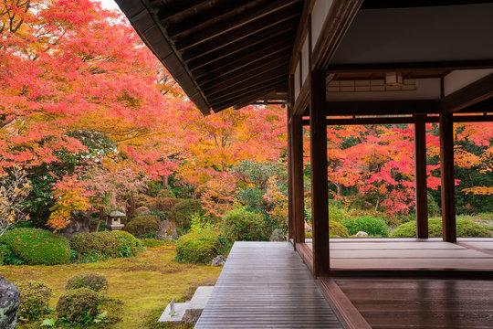 京都 源光庵の紅葉