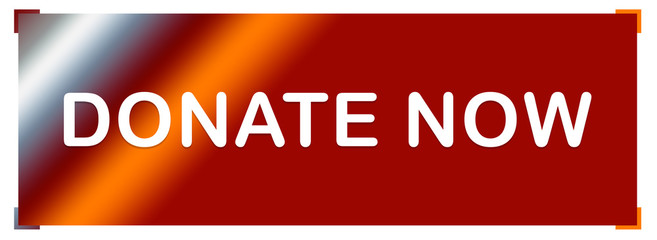 donate now web Sticker Button
