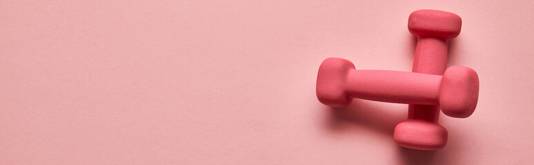 top view of pink dumbbells on pink background with copy space, panoramic shot