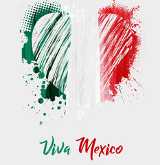 Viva Mexico background with grunge heart flag
