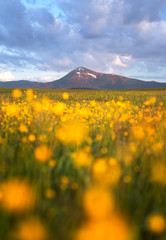 Petros mountain i spring, Ukranian Carpathians