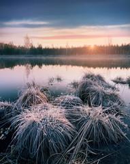 Frosty morning on marsh