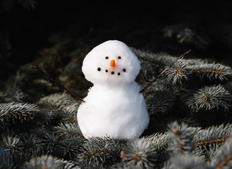 Close up of small snowman sitting on the branches of evergreen tree.
