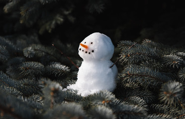Small snowman sitting on the branches of an evergreen tree.