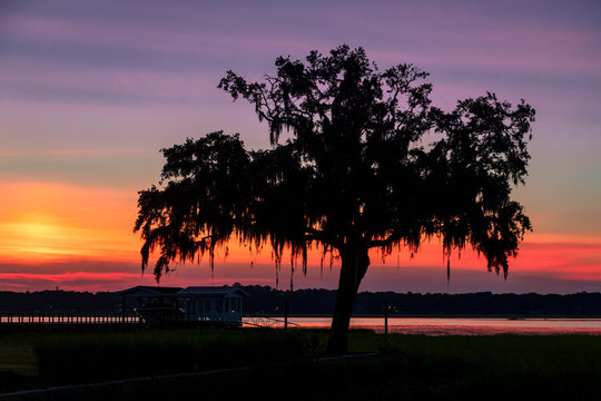 Low Country Dawn - Beaufort, South Carolina