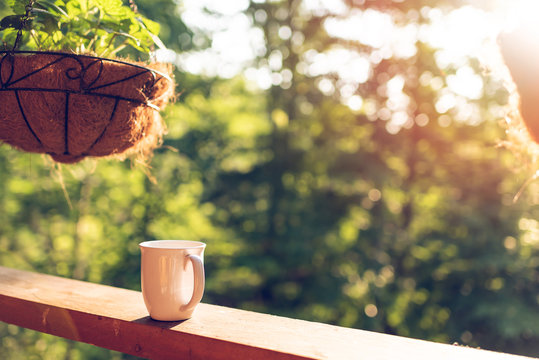 Hanging potted plant with bokeh background on porch of house with sunrise sun and coffee mug on wooden cabin cottage