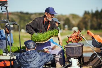 地域の人々と協力して田植えをする農家さん