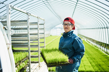 Portrait of farmer holding seedlings in greenhouse