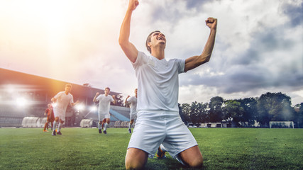 Professional Soccer Player Does Knee Slide Celebrates Awesome Victory after Scoring a Goal. His Team Celebrates Victory on a Stadium. Warm Sunlight Flare.