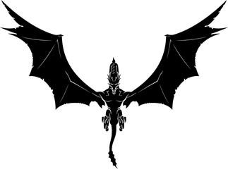Dragon Descend Fotoväggar
