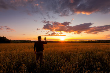 Man shooting the sunset on the mobile on the wheat field.