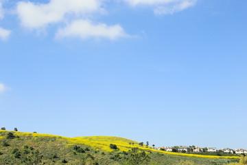 Southern California suburban