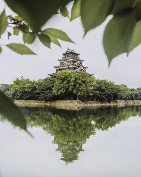 trees cover lower pagoda