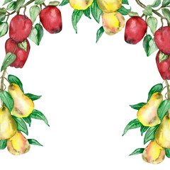 Watercolor frame of lush branches of pear tree with juicy pears and green leaves and Apple branches with red apples. Autumn illustration of branches with pears and apples, for a beautiful design.