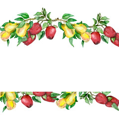 Watercolor hand painted nature banner frame with fresh garden fruits: red apples and yellow pears on the branch with green leaves for invitations and greeting cards with the space for text